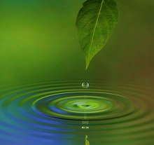 Reiki. Library Image: Leaf and Water